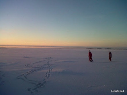 Walking on Sea Ice